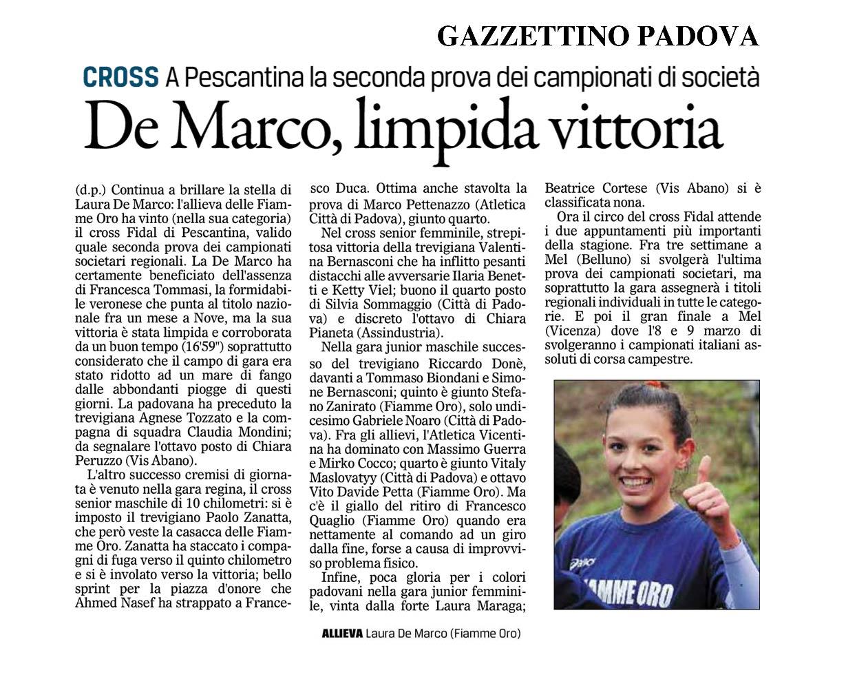 il Gazzettino Padova 03_02_14